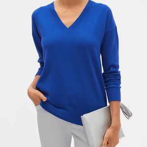 Premium Luxe Machine Washable V-Neck Sweater -Blue